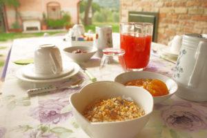 Pozzo-vivalpa-B&B-marche-ancona-serra-de-conti-senigallia-countryside-relax-italy-colazione-breakfast-giardino-garden